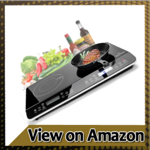Duxtop 9620LS LCD Portable Double Induction Cooktop