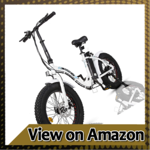 ECOTRIC Powerful 500W Electric Folding Bicycle